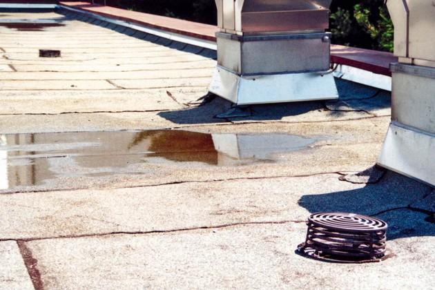 Poröses Material, Risse und vor allem stehendes Wasser auf dem Flachdach sind deutliche Hinweise auf Handlungsbedarf.