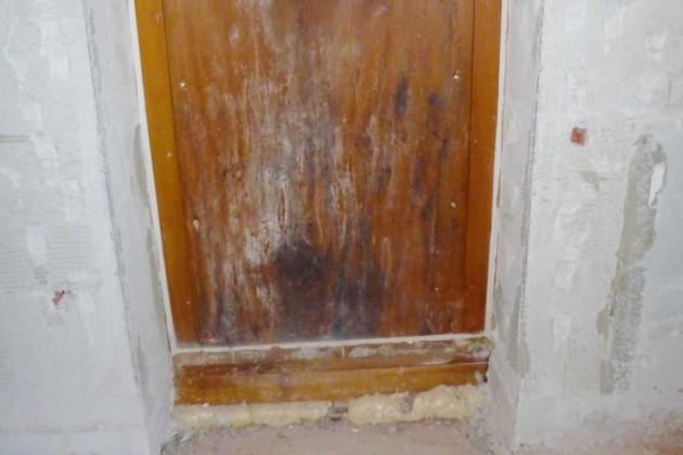 An der Holzverkleidung unterhalb des Fensters hatte sich Schimmel gebildet.