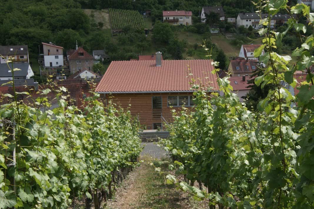 Gleich hinterm Haus beginnen die Weinberge von Randersacker.