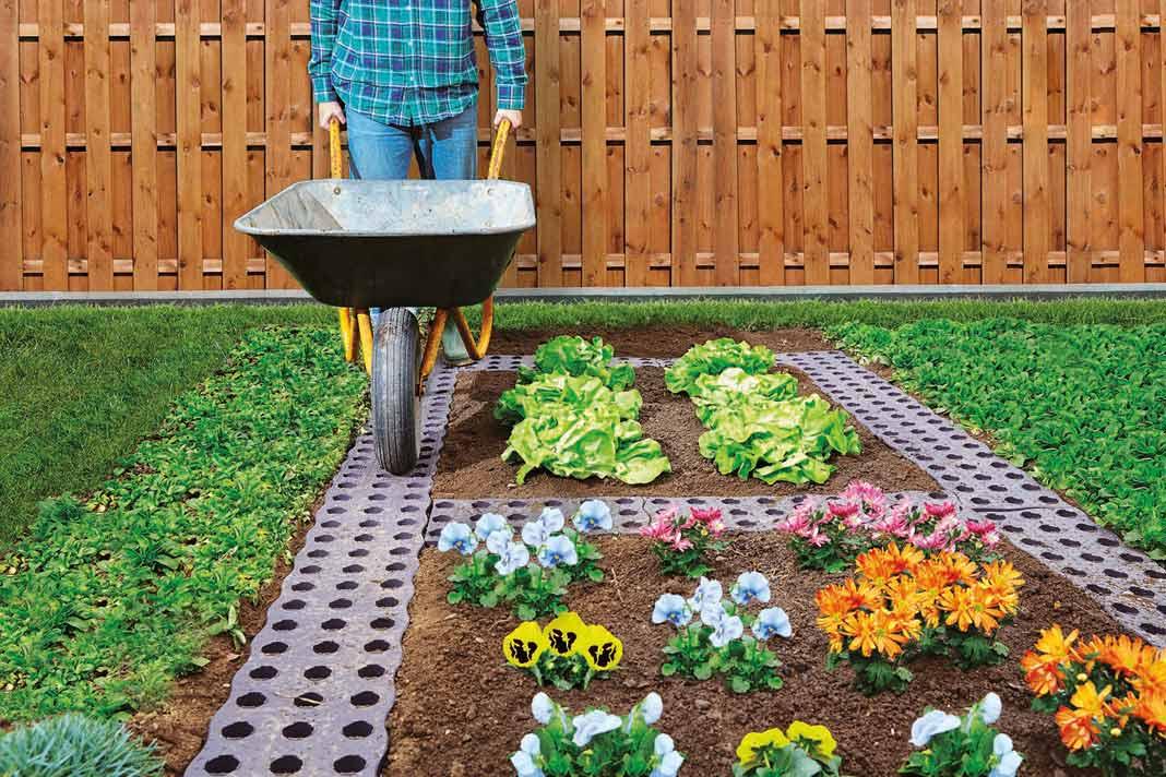 Immer frisch, immer lecker und garantiert bio: Obst, Gemüse und Kräuter lassen sich mit etwas Geschick ohne weiteres im eigenen Garten anbauen.