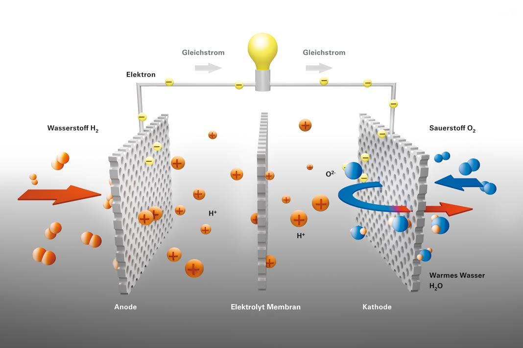Funktionsprinzip der Polymermembranoder PEM-Brennstoffzelle.