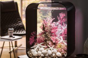 Pop-Art Aquarium: Das futuristische biOrb LIFE Aquarium setzt je nach Deko farbliche Akzente. Quelle: Oase GmbH