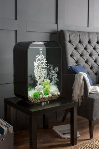 Weiße Eleganz: biOrb LIFE Aquarium als lebendiges Deko-Element, das sich durch das vielfältige Zubehör immer wieder neu inszenieren lässt. Quelle: Oase GmbH