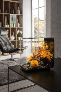 BiOrb FLOW Sorgt Für Farbtupfer In Orange. Via Fernbedienung Lassen Sich 16  Verschiedene Farben Passend