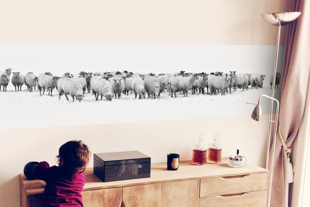 Eine Fototapete eröffnet unendlich viele Möglichkeiten, wie hier das Motiv Schafherde. Foto: K&L Wall Art