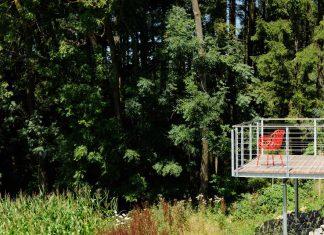 Fast Wohnen wie im Wald. Foto: Günter Standl
