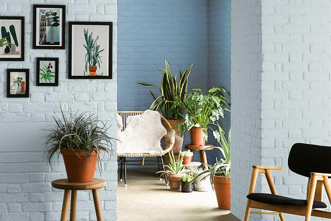 In einer offenen Raumgestaltung kann es helfen, die hintere Wand dunkler zu streichen.