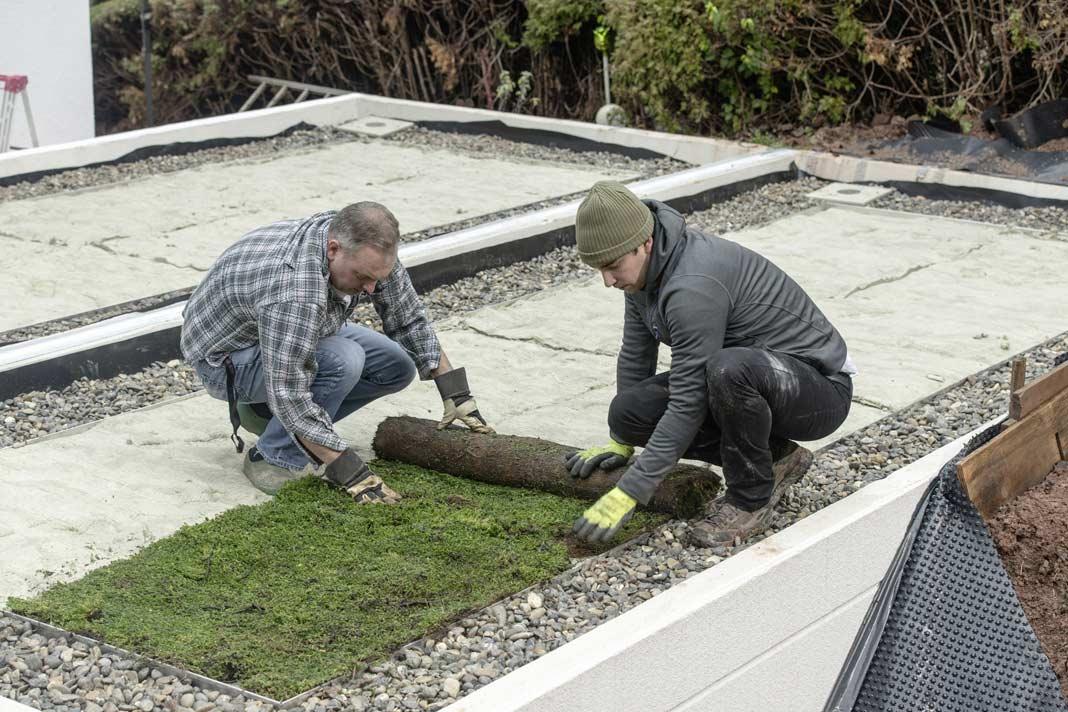 Die bepflanzte Vegetationsebene rundet die Dachbegrünung ab.