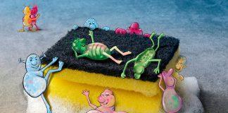Bakterien siedeln sich gern auf einem Küchenschwamm an