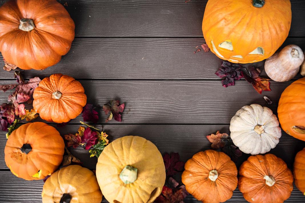 Halloween dekoration mit Kürbissen und Laub
