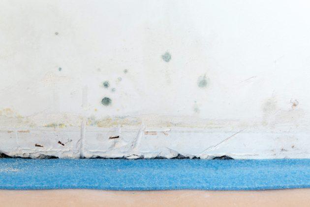 Stockflecken an der Wand des Home-Offices