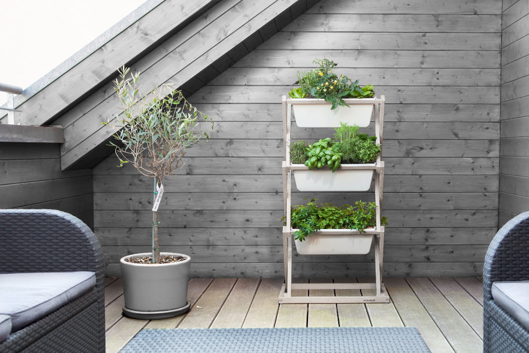 Vertical Garden zieht sich über drei Etagen - Heimatwerk.de
