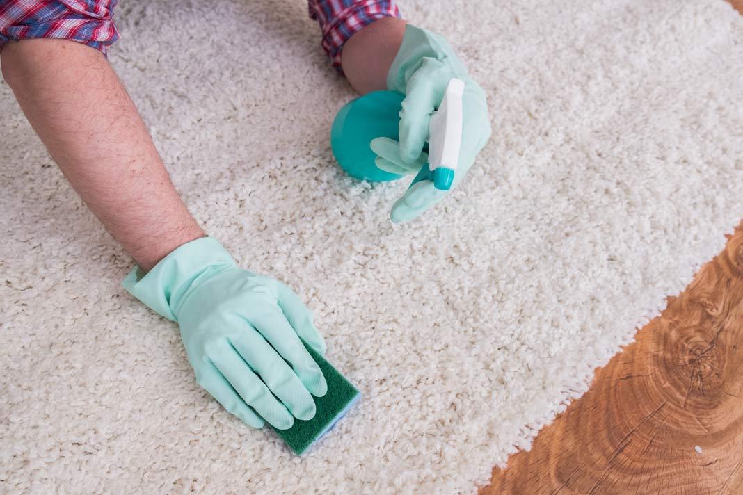 Teppich wird gereinigt, um gegen Allergie vorzubeugen