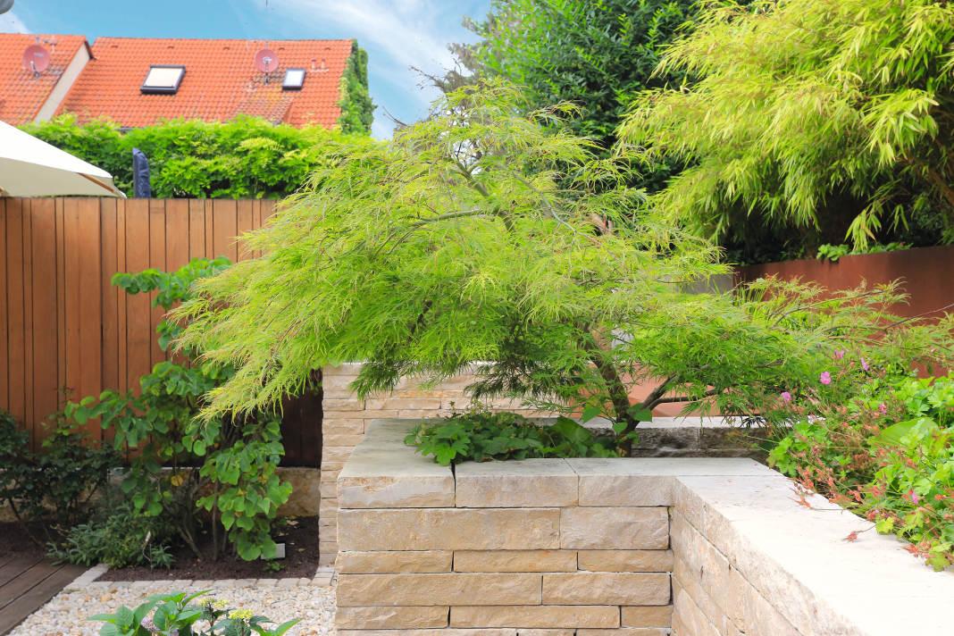 Garten wurden terrassiert - Gärtner von Eden