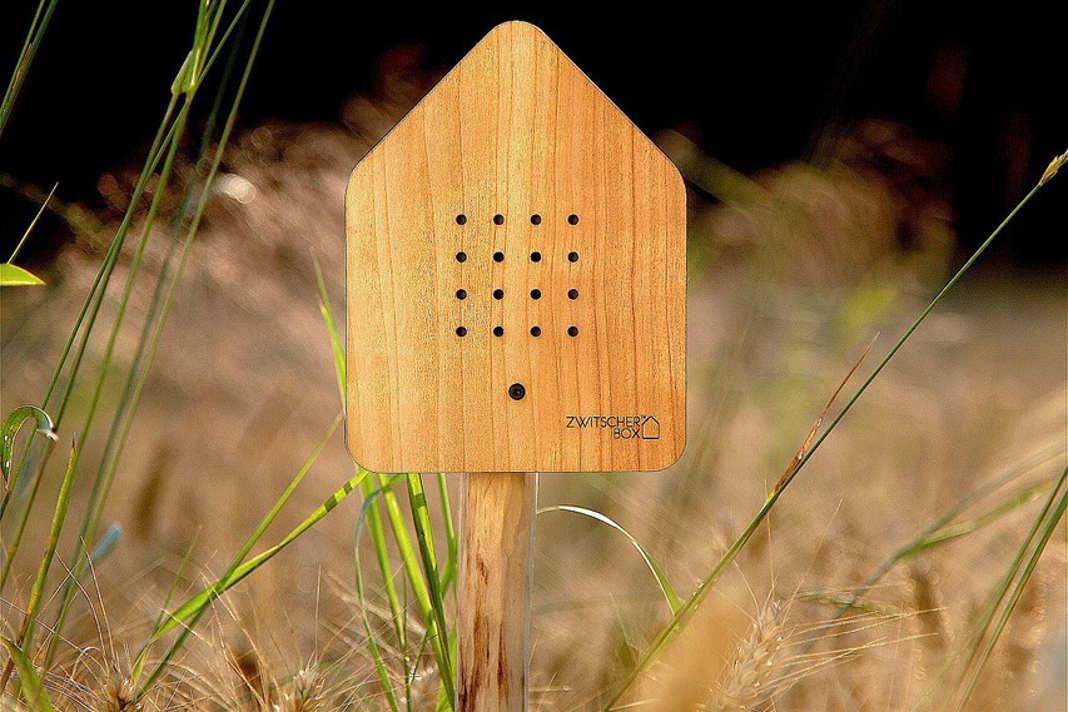 Nachhaltige Zwitscherbox mit Bambus - Relaxound GmbH