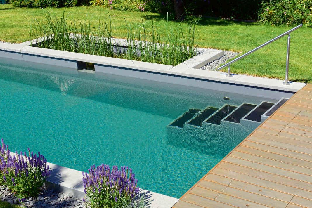 Mini Pool als private Grünoase