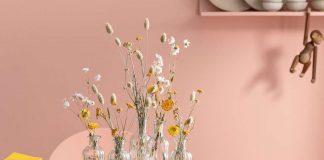 Trockenblumen als sommerliche dekorative Wohnaccessoires - Dehner Gartencenter GmbH & Co. KG