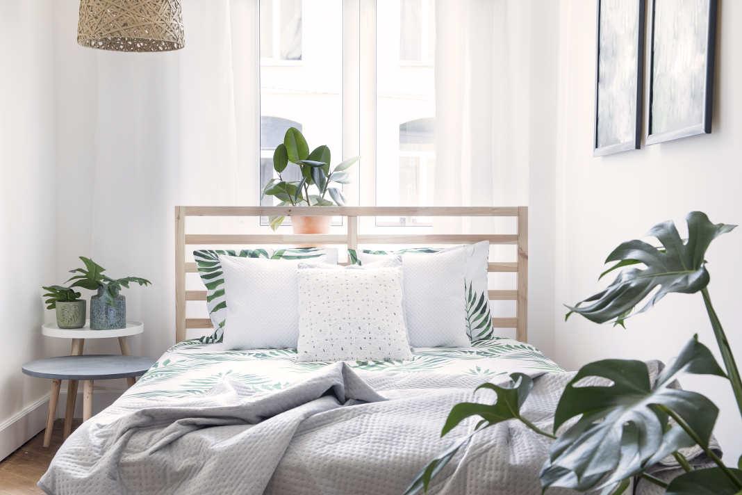 Schlafzimmer mit Zimmerpflanzen gestaltet
