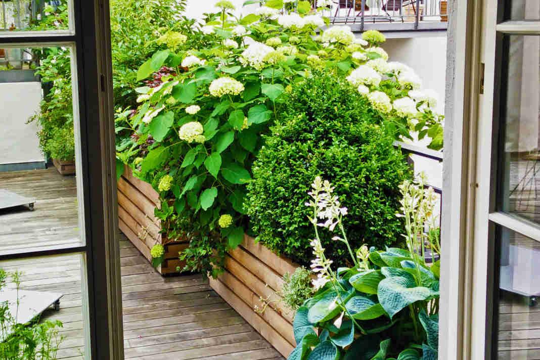 Praktische Pflanzenkaesten mit Blumen - epr/Gartenfrosch