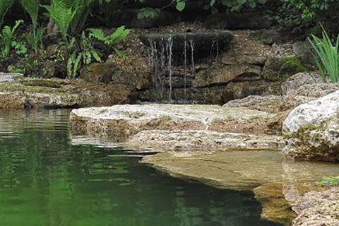 Schwimmteich mit Wasserfall im Garten eines Einfamilienhauses
